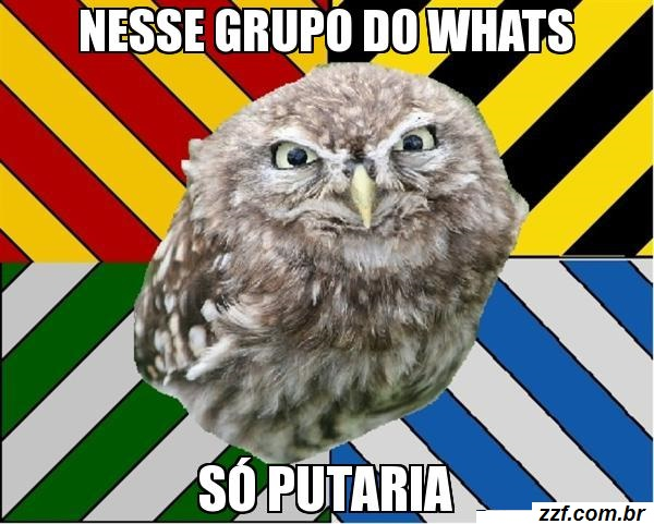 meme_engracado_com_frases_para_whatsapp_b473efbd66905958a35be94d25efe47d_meme para compartilhar no grupo do whatsapp