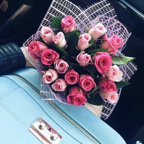 rosas-buque