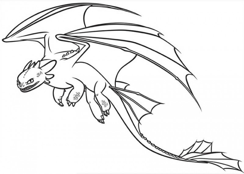 How-to-Draw-Toothless-from-How-to-Train-Your-Dragon-Coloring-Pages-800x5711