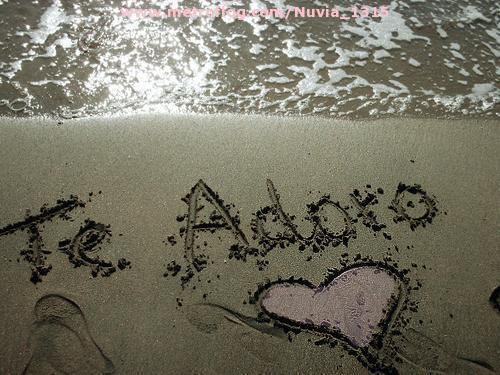 Te-Adoro