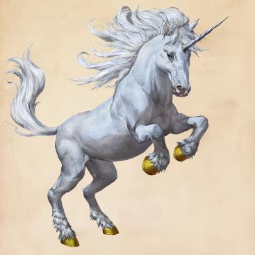 Unicorn_FBCFTWW
