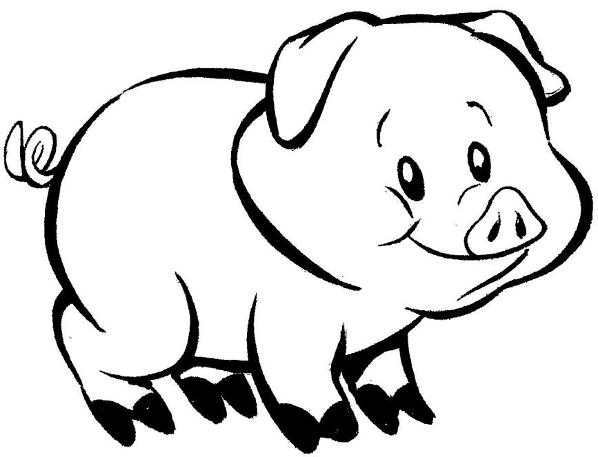 desenho-pra-colorir-porquinho