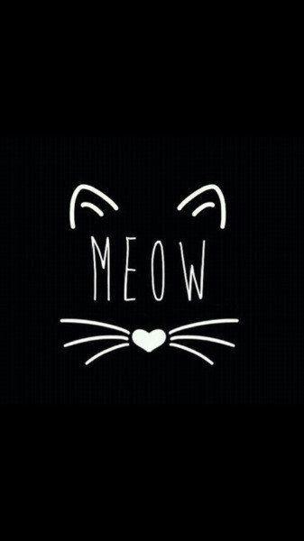 3b0fc596f3676288f2e00ea08129a1f7--black-cat-humor-black-cat-quotes