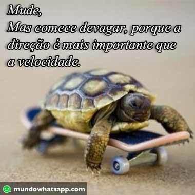 frase_motiv (1)
