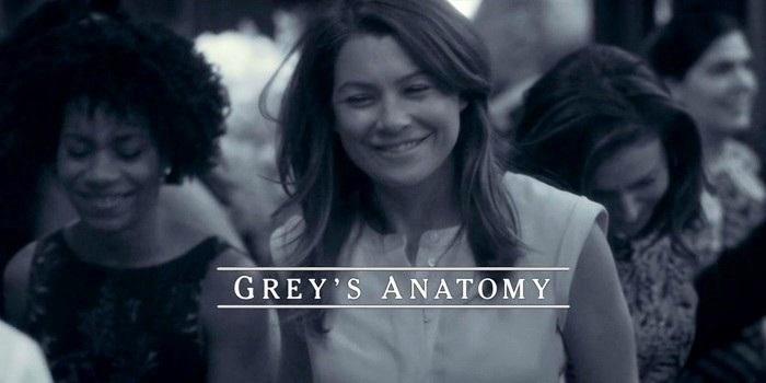 greys-anatomy-11x24