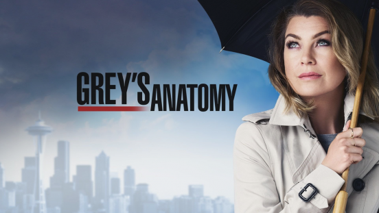 greys-anatomy-netflix-12-temporada