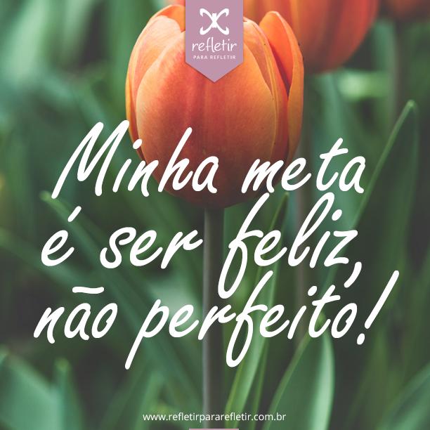 meta_ser_feliz