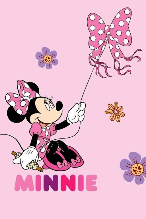 ba29fc87bd1d13f00e2776465f88ce53--fiesta-minnie-mickey-minnie-mouse