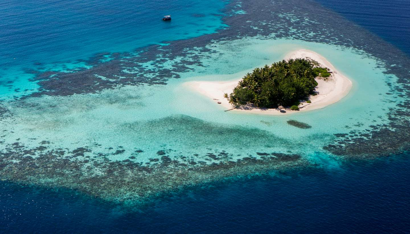 how-survive-on-a-desert-island